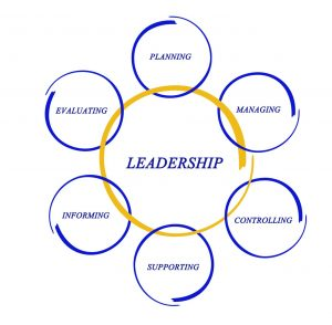 Talent development coaching